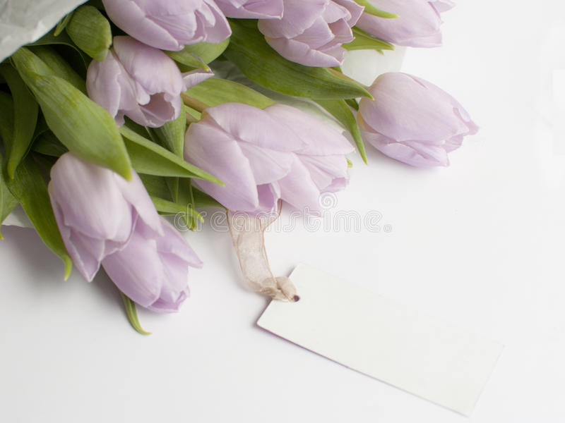 Bouqet tulips and gift on the white background. Mothers day pink gift and bouqet of tulips royalty free stock photos