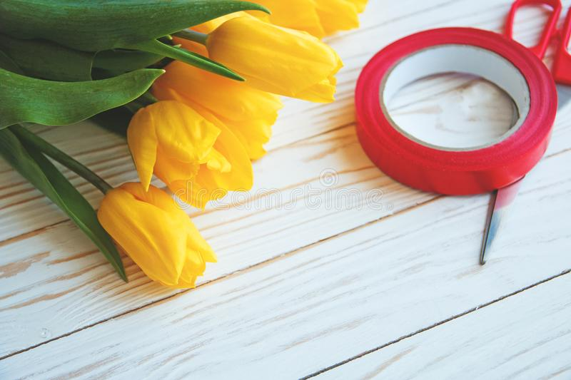 Bouqet of yellow tulips on a white wooden background and with red ribbon and scissors close up.  royalty free stock images