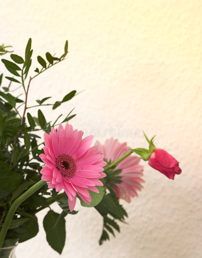 Free Bouquet Stock Images - 2177904
