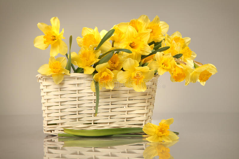 Bouquet. Yellow flowers in white basket stock photos