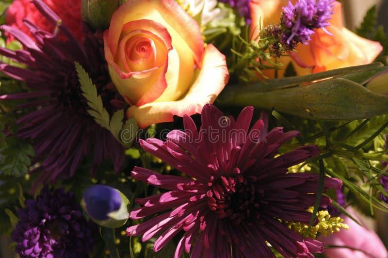 Bouquet 5 photos libres de droits