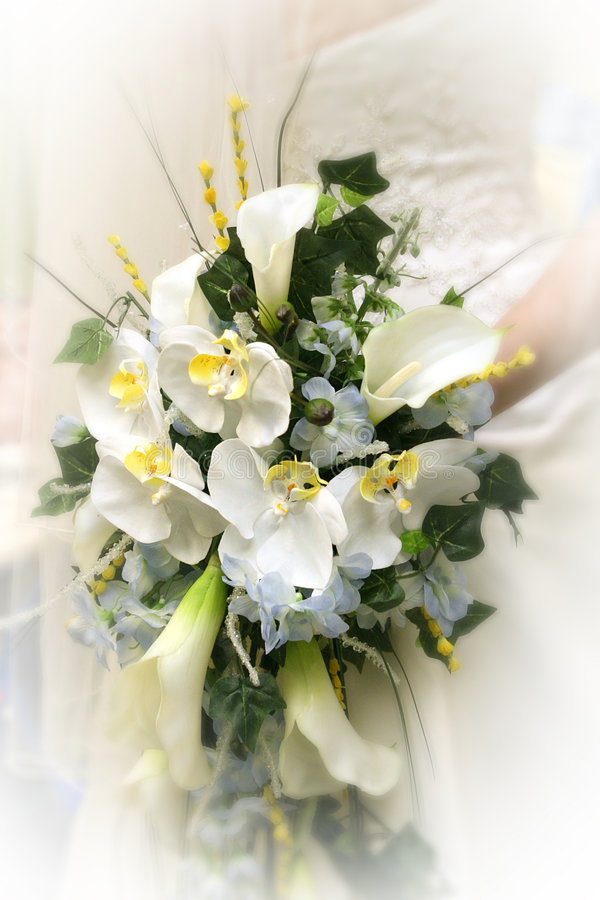 Free Bouquet Royalty Free Stock Photography - 7720667