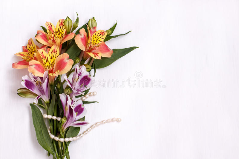 Bouquet of alstromeria with a pearl thread on white background stock photos