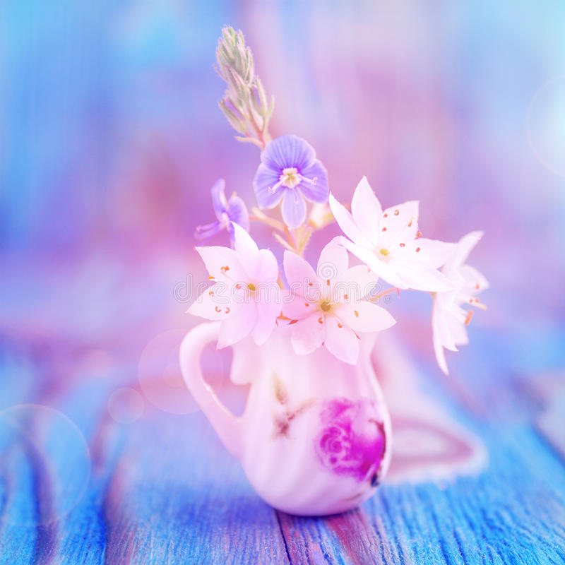 Bouquet of Anemone, windflower in miniature, diminutive jug. Macro close-up photo, soft focus. Rustic colored wooden background royalty free stock photography