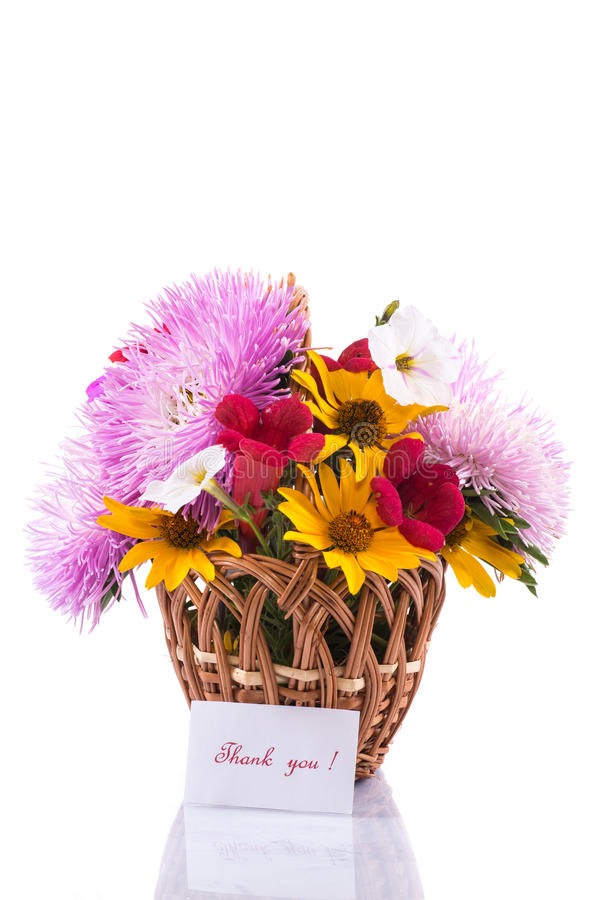 Download Bouquet of asters stock photo. Image of blossom, closeup - 33164022