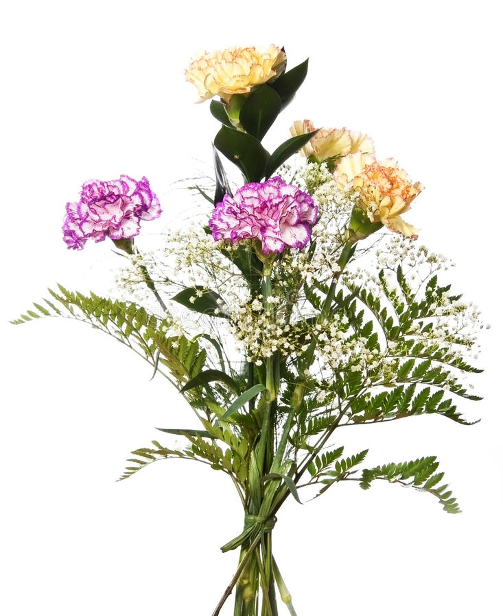 Bouquet avec des oeillets images stock