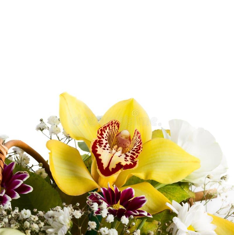 Bouquet avec des orchidées image libre de droits