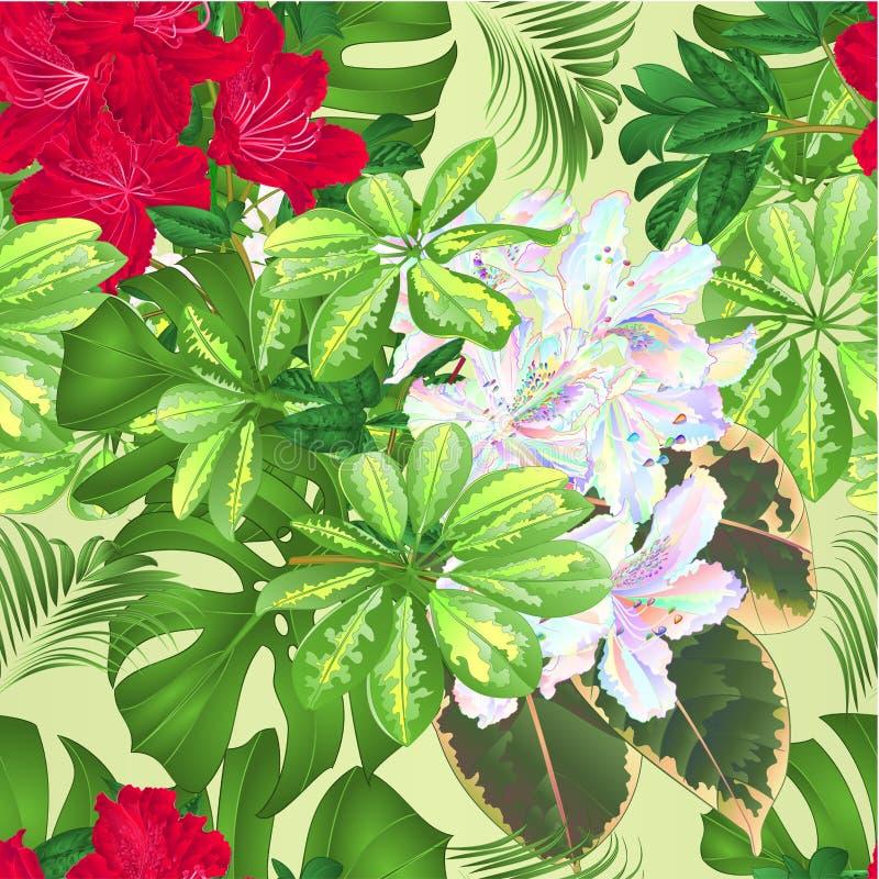 Bouquet avec l'arrangement floral tropical de fleurs, avec le beau philodendron coloré rouge et multi de Schefflera de rhododendr illustration stock