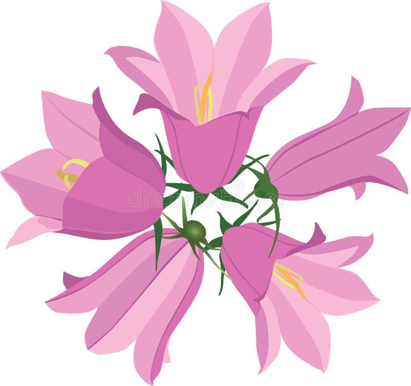 Bouquet avec le bluebell de fleurs illustration de vecteur