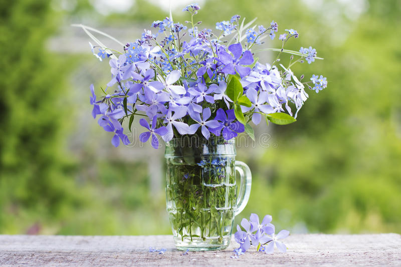A bouquet of beautiful blue flowers against a green garden royalty free stock image