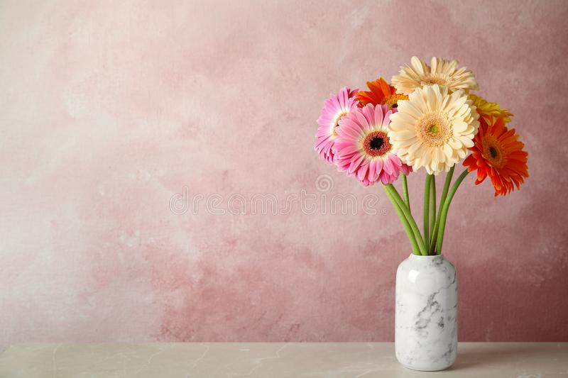 Bouquet of beautiful bright gerbera flowers in vase on marble table against color background. Space for text royalty free stock image