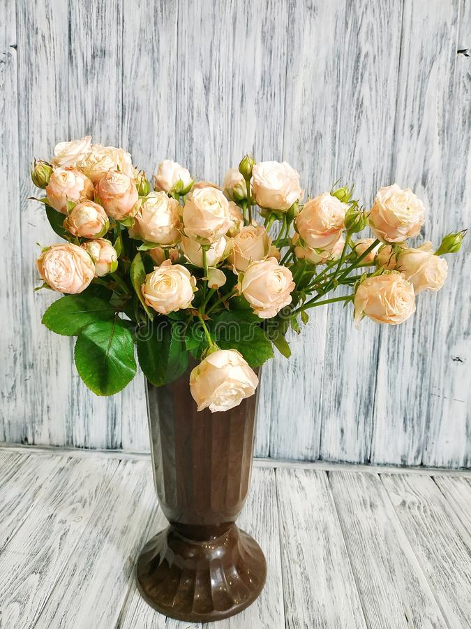 A bouquet of beautiful cream roses in a vase, close-up stock photography