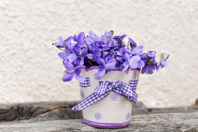 Bouquet of beautiful purple violets flowers in a small vase stock images