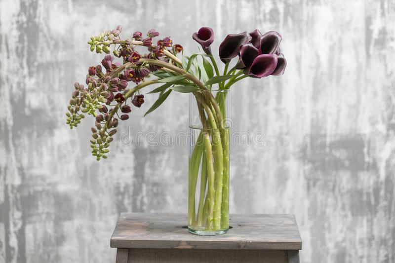 Bouquet of Beautiful violet-brown Fritillaria flowers and Calla. Spring flowers in vase on wooden table. Wallpaper.  stock image