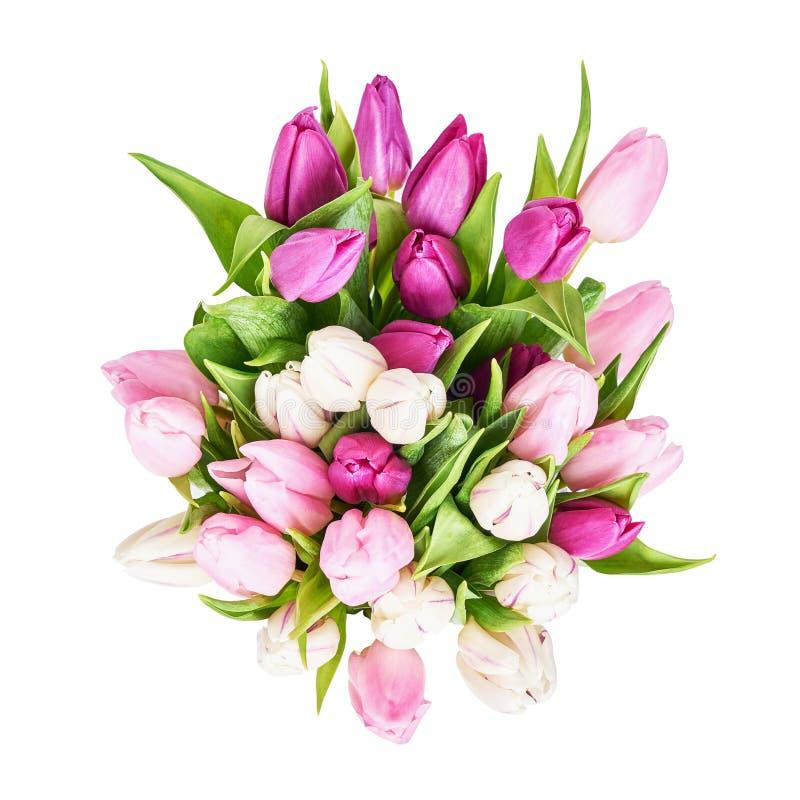 Bouquet blanc et rose de tulipes d'isolement au-dessus du fond blanc Copiez l'espace, vue d'en haut Anniversaire, jour de mères,  photos stock
