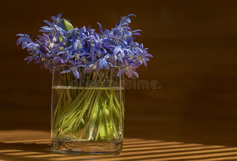 Bouquet of flowers in a glass on the table. A bouquet of blue flowers in a glass stands on a wooden table royalty free stock photos