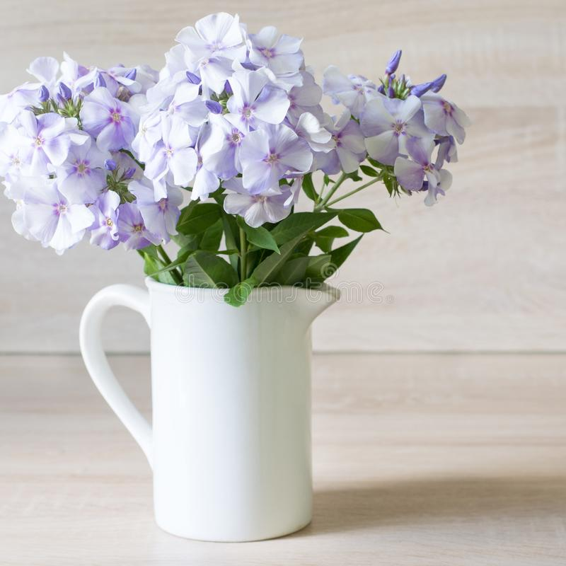 Bouquet of blue phlox in a white vase on wooden background. Spring stock photo