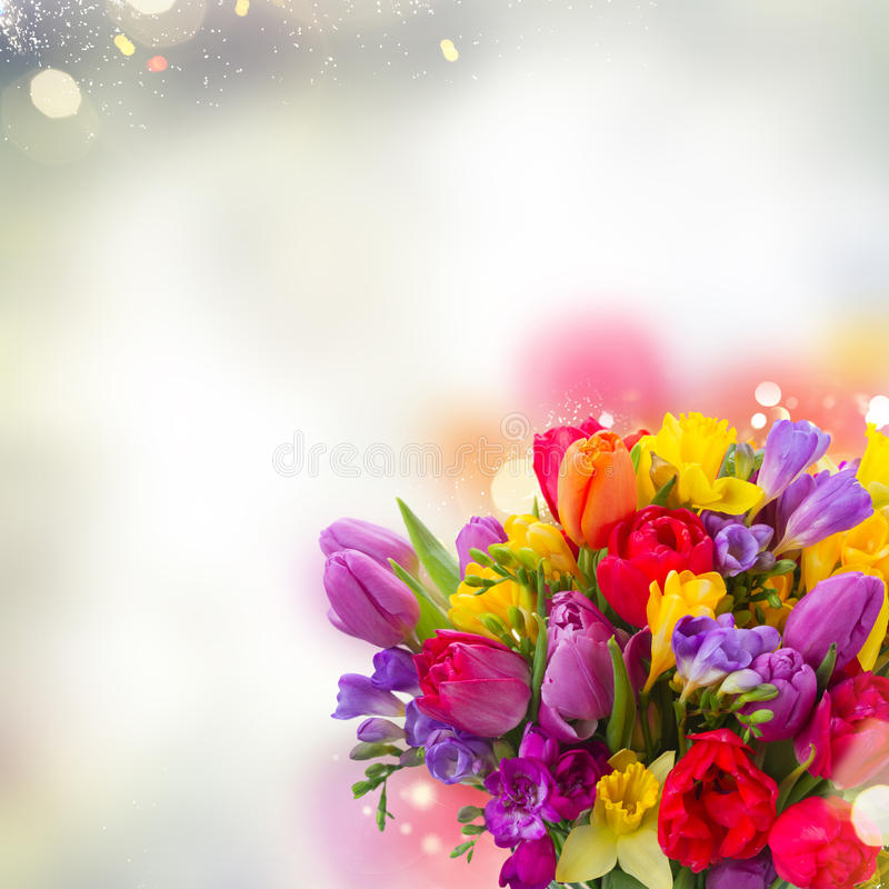Bouquet of bright spring flowers. Close up over gray bokeh background royalty free stock photography