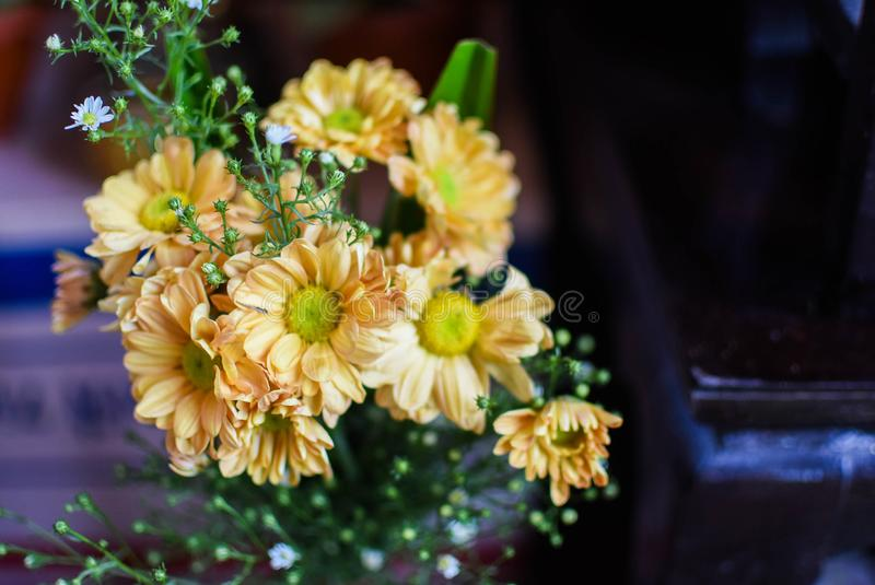 A bouquet of bright yellow flowers in a vase  beautiful stock photography