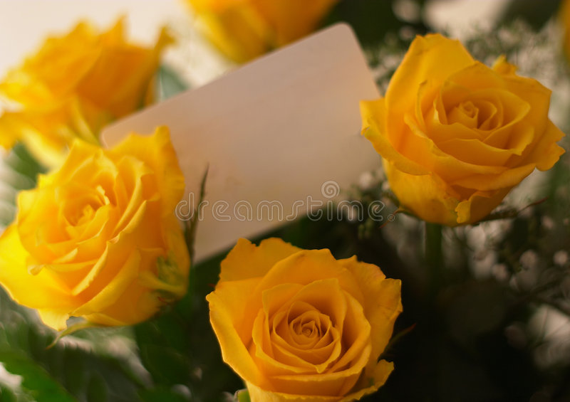 Bouquet and card. A bouquet of yellow roses with a blank gift tag among them stock image
