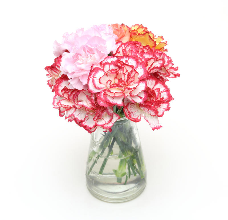 Bouquet of carnation in a glass bottle. Pictured bouquet of carnation in a glass bottle royalty free stock photos