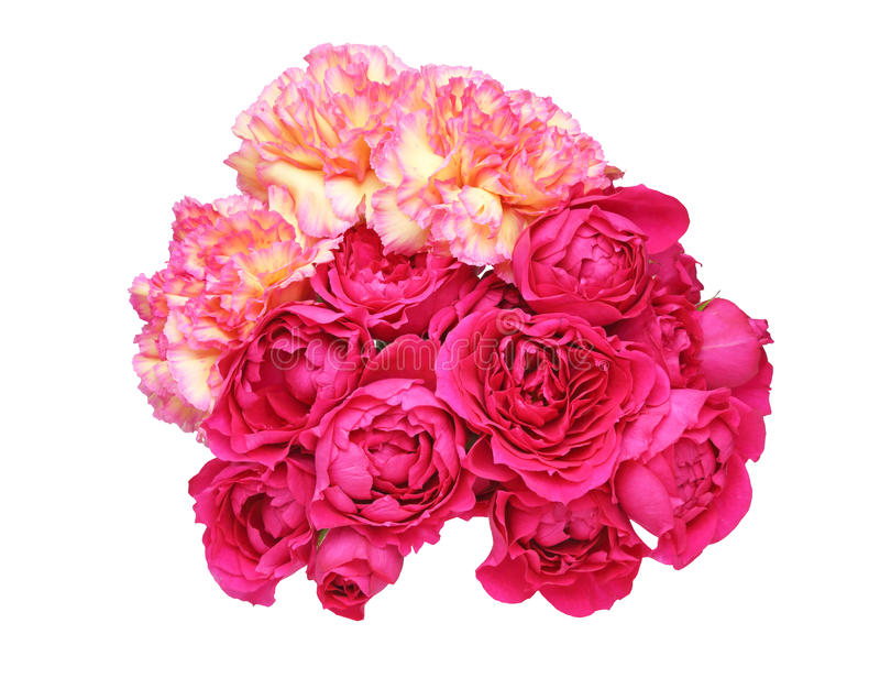 Bouquet of carnation and rose. Pictured a bouquet of carnation and rose in a white background stock image