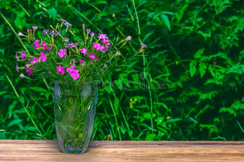 Bouquet of carnations in a glass vase on a green natural background stock photo