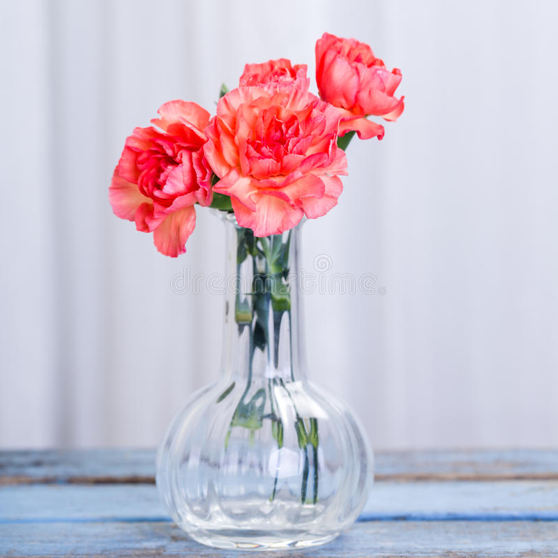Bouquet of Carnations in glass vase stock images