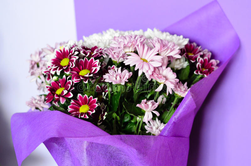 Bouquet. Close up of Bouquet of white and purple daisy flowers royalty free stock images
