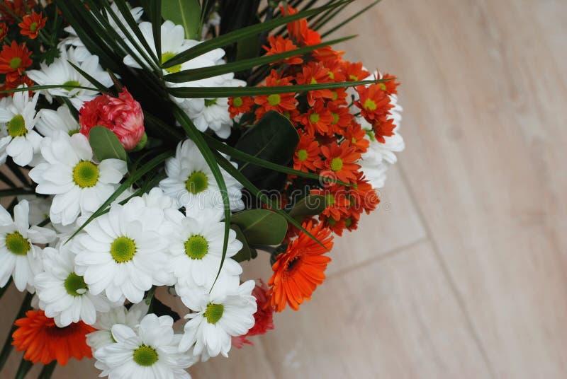 Bouquet coloré des fleurs de gerbera de chrysanthème d'isolement au-dessus du fond en bois closeup photos stock