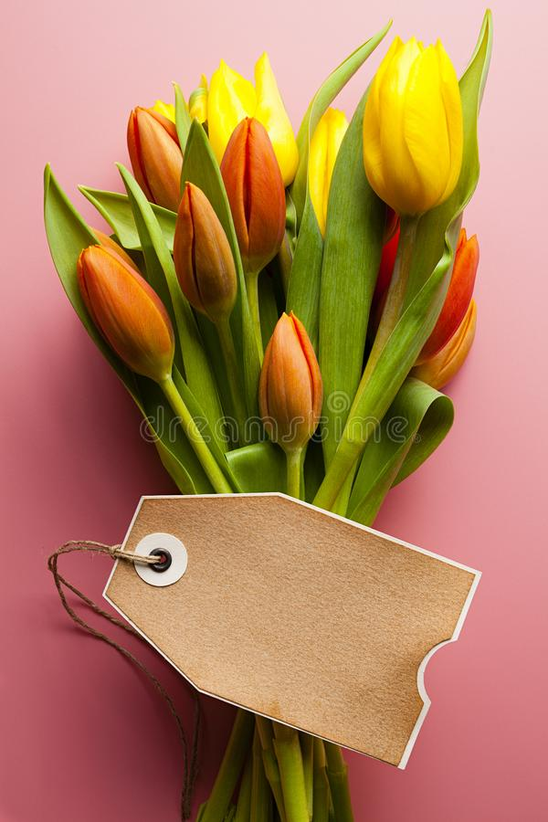 Bouquet of colorful tulips and blank paper card on a pink background royalty free stock images