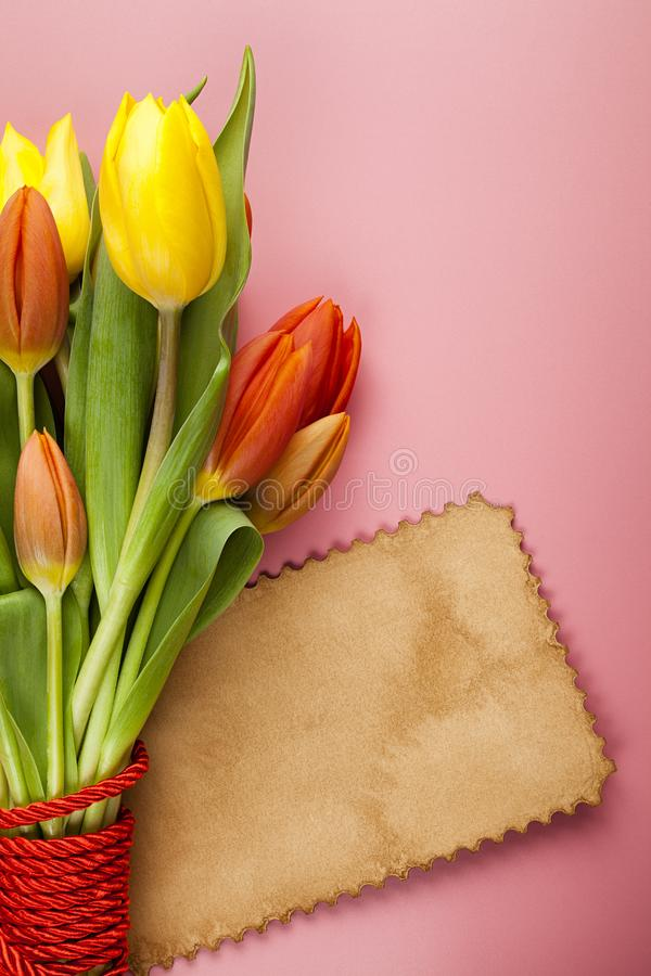 Bouquet of colorful tulips and blank paper card on a pink background stock photo