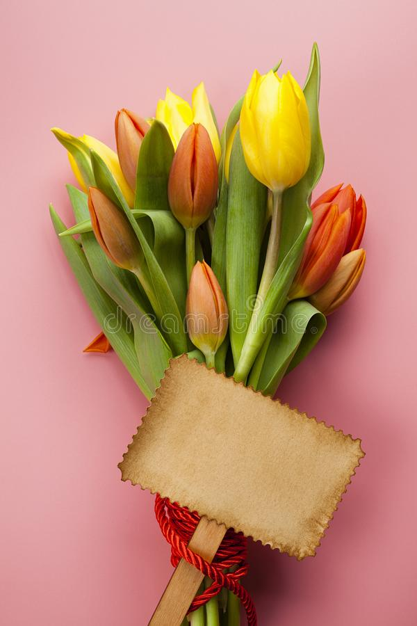 Bouquet of colorful tulips and blank paper card on a pink background royalty free stock photo