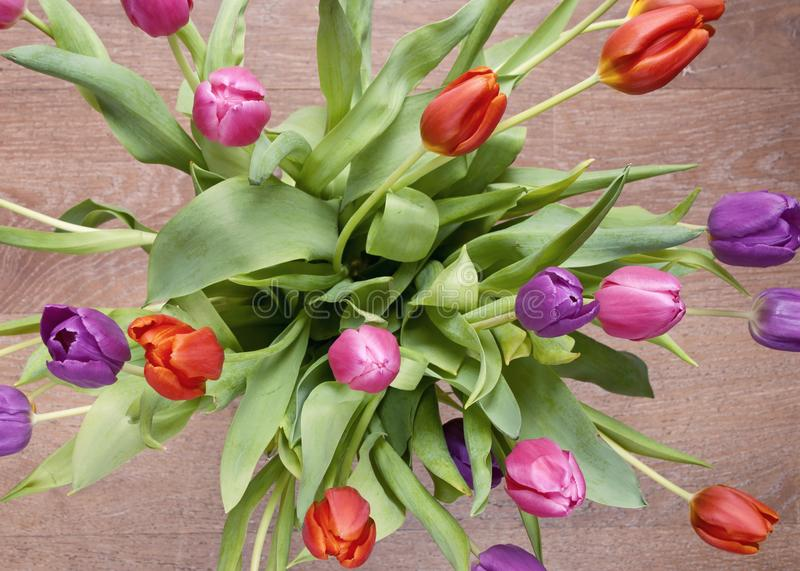 Bouquet of colorful tulips in vase on wooden floor royalty free stock photography