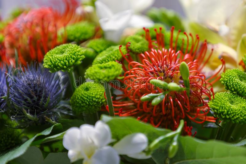 Bouquet of colourful exotic flowers close-up as gift royalty free stock images