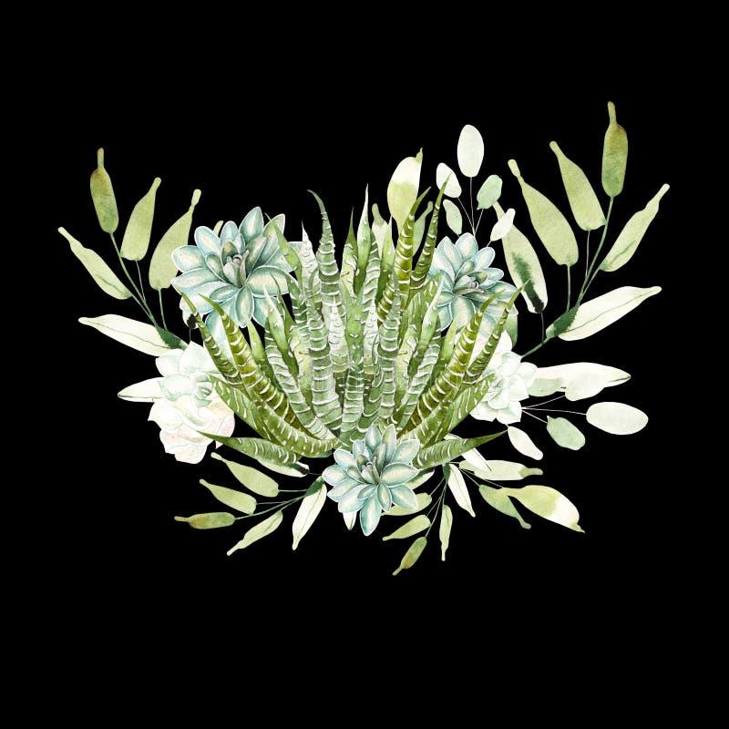 Bouquet d'aquarelle avec des cactus et des succulents illustration de vecteur