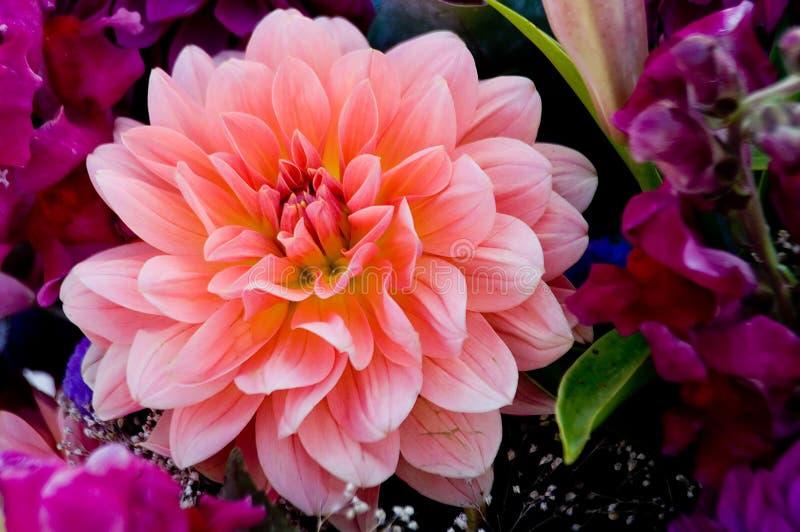 Bouquet d'automne images libres de droits