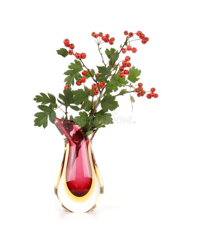 Bouquet d'automne avec des baies d'aubépine images libres de droits