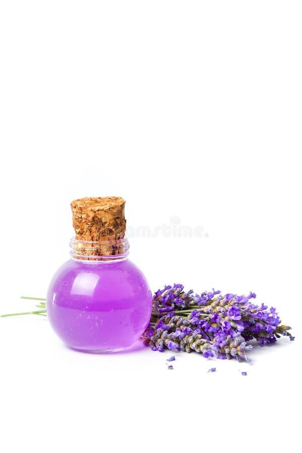Bouquet d'essence de lavande et de fleur d'isolement photographie stock libre de droits