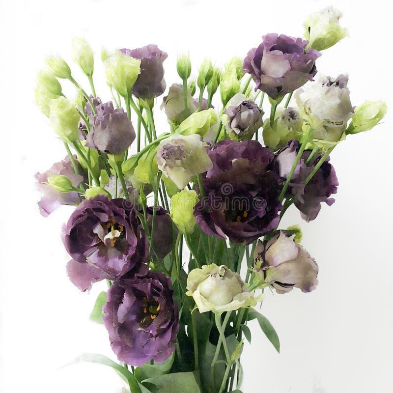 Bouquet d'eustoma des bourgeons pourpres et verdâtres, stylisé comme modèle d'huile photo stock