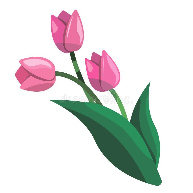 Bouquet d'illustration rose de vecteur de clipart (images graphiques) de tulipes illustration stock