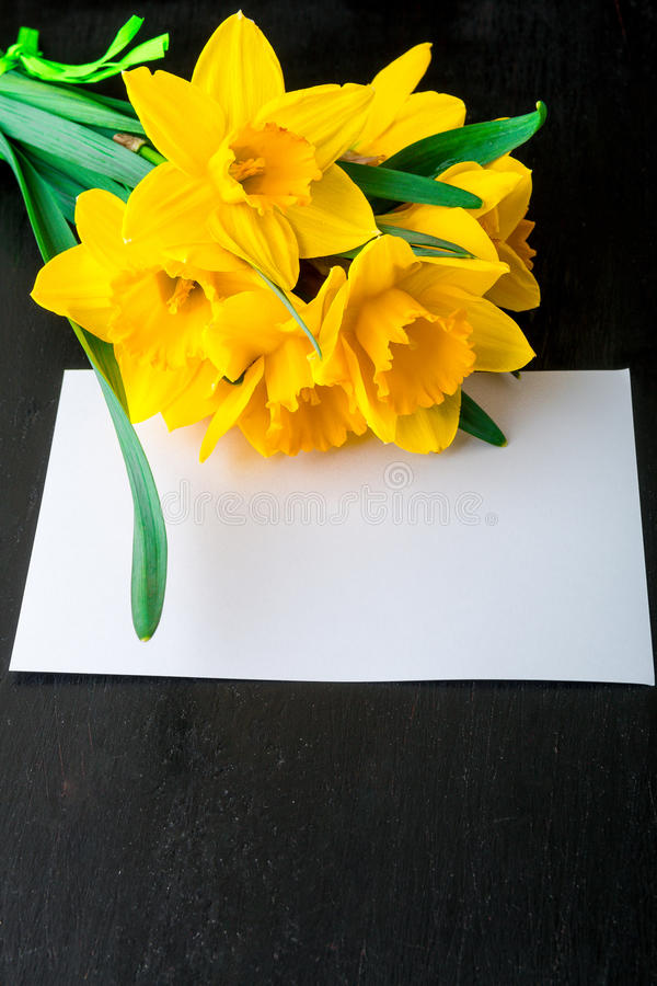 Bouquet of daffodil near empty card on black background. Top view. Copy space. Mothers day or Womens day. Greeting. stock photo