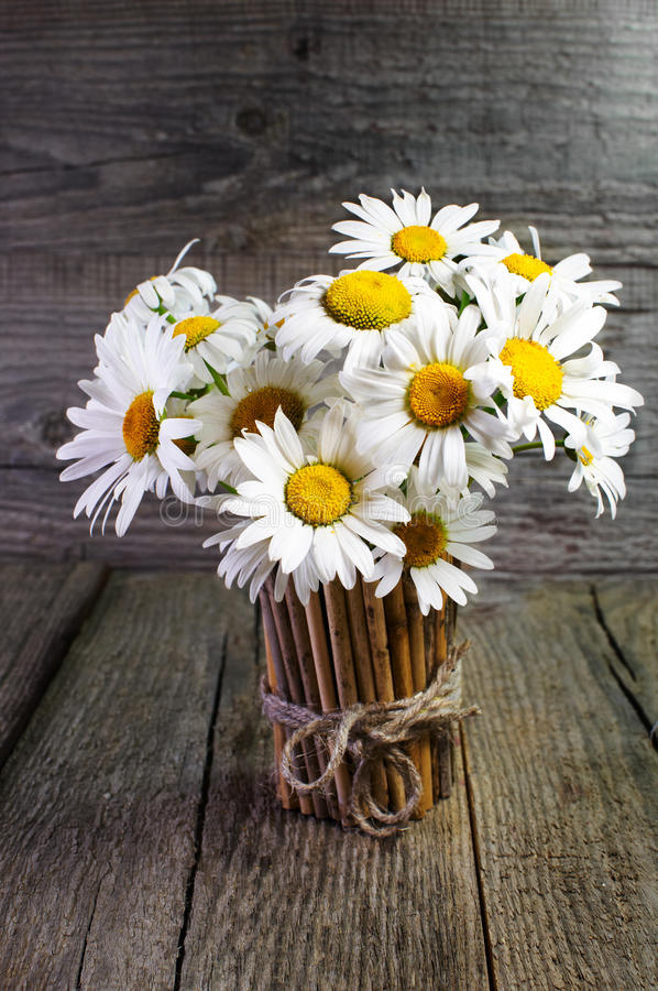 Bouquet of daisies in a bamboo vase royalty free stock photos
