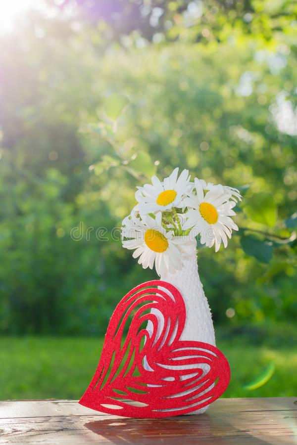 Bouquet of daisies in a white vase decorated by knitting and a red figured heart on a table royalty free stock images
