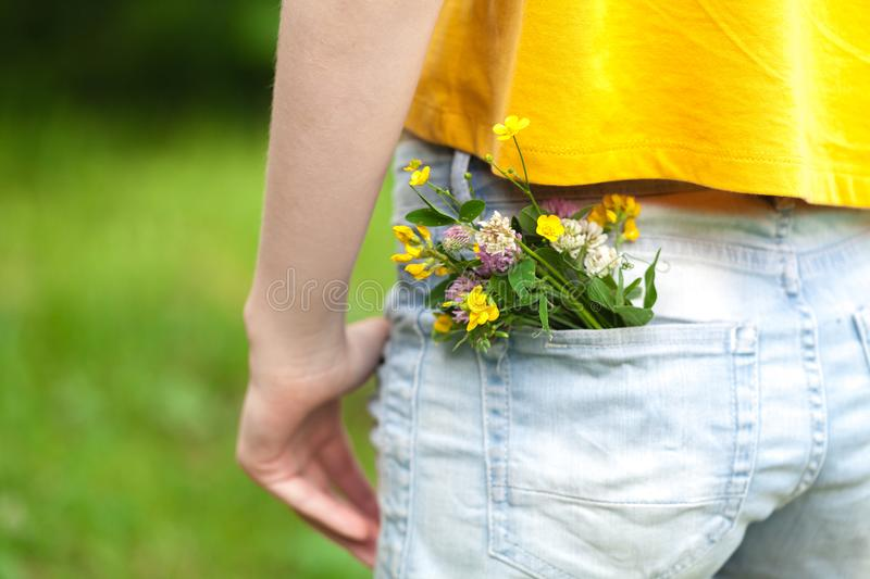 Bouquet of daisy in jean pocket royalty free stock photography