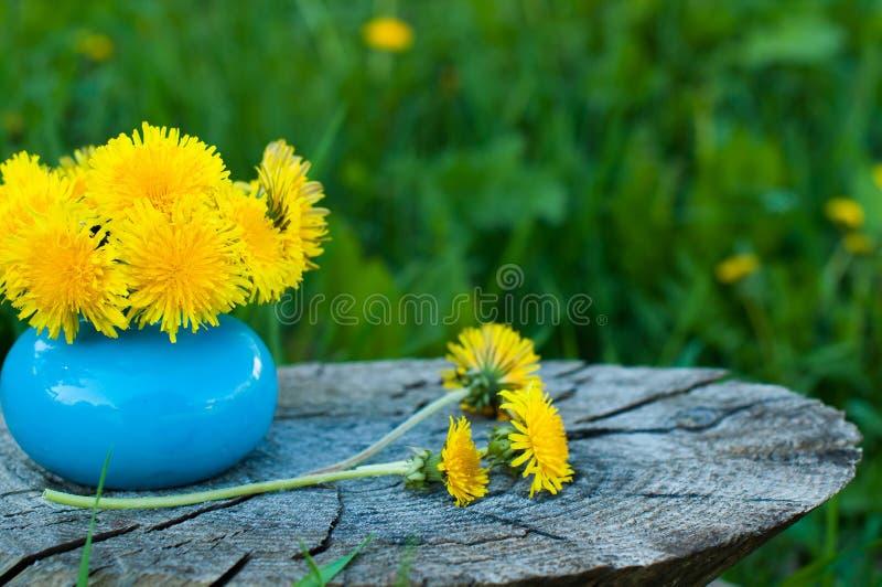 bouquet of dandelions stock images