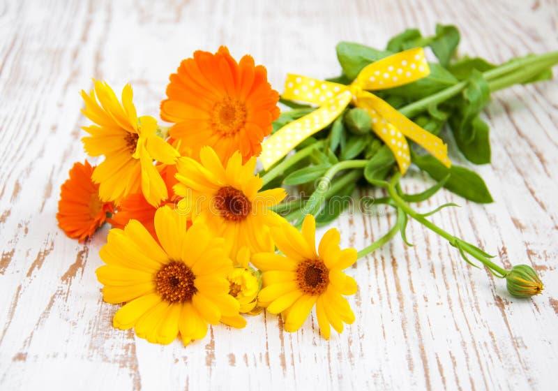 Bouquet de Calendula image stock