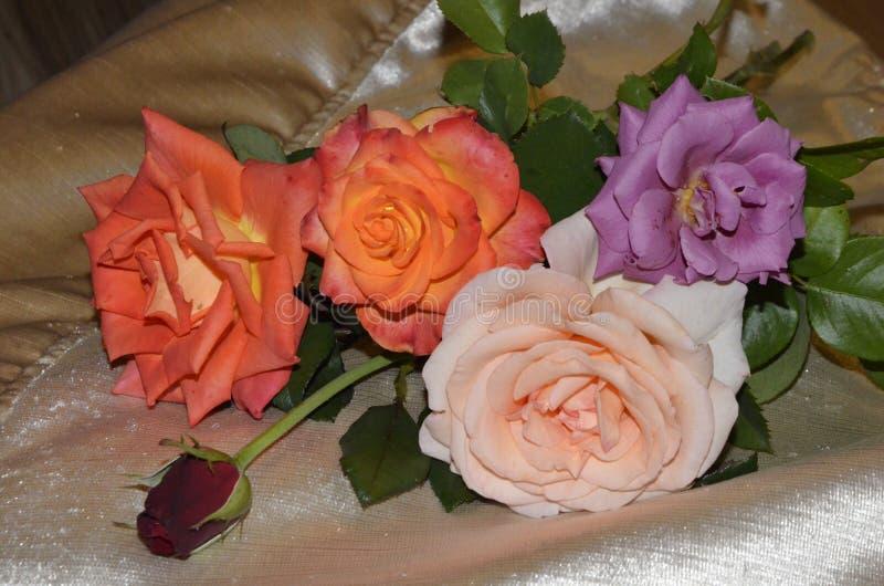 Bouquet de cinq roses de rouge, d'orange, de lilas et de rose sur une surface de couche de couleur d'or photos stock