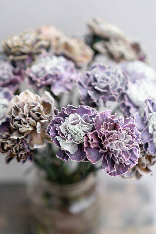 Bouquet de couleur peu commune de fleurs d'oeillet Fond de source Présent de groupe de clou de girofle pour le jour de mères images stock