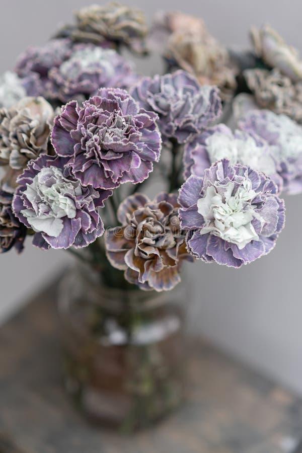 Bouquet de couleur peu commune de fleurs d'oeillet Fond de source Présent de groupe de clou de girofle pour le jour de mères photo libre de droits